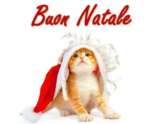 Sms Di Buon Natale.Auguri Di Natale Frasi Sms Mms Email Cartoline E Facebook I Migliori Da Inviare Online